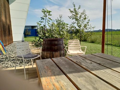 Gastgarten bei der Bevog Brauerei
