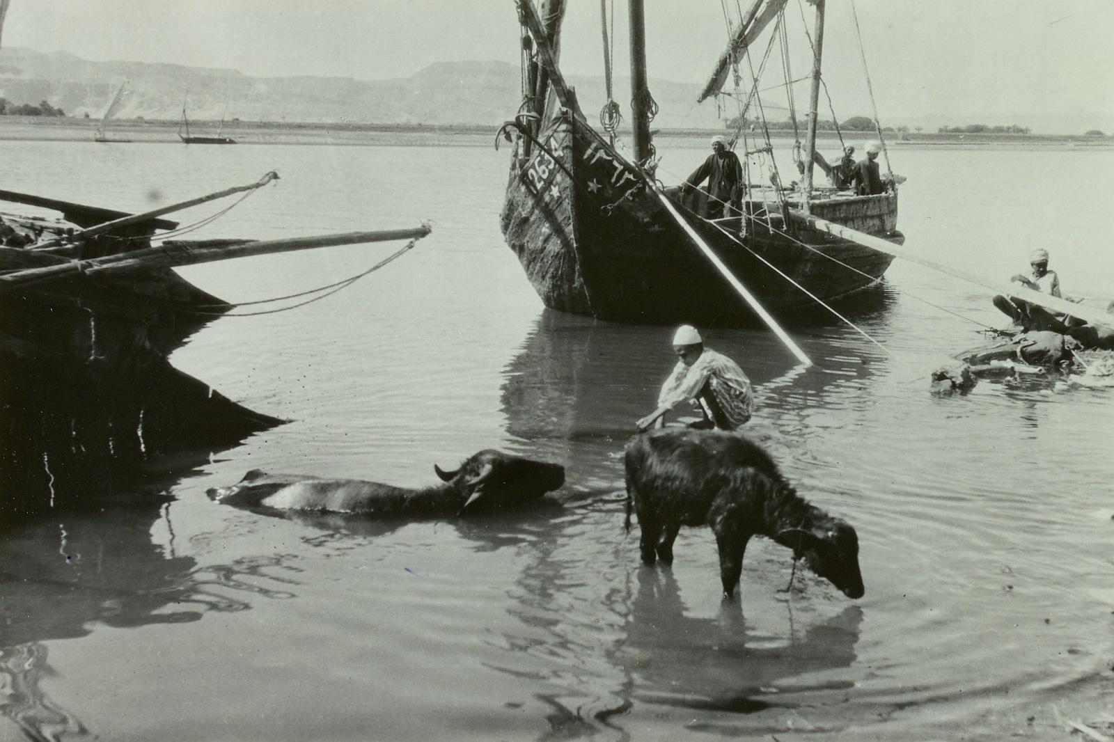 Луксор. Лодка на Ниле