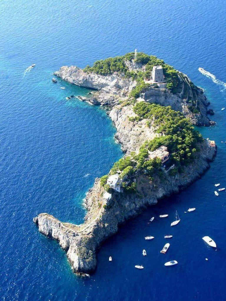 Isla delfín Gallo Lungo