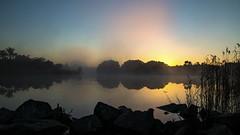 Rising fog as the spring sun shines