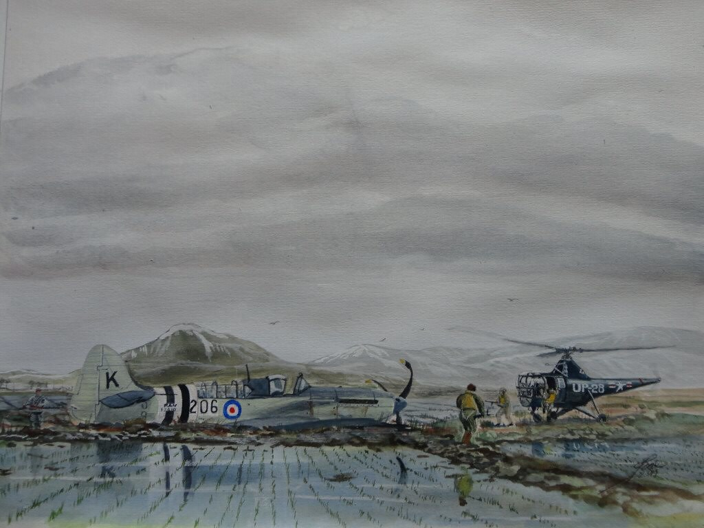during a moderately successful strike involving five RAN aircraft against a railway tunnel, a Firefly was shot down 75 miles (121 km) inland, deep inside North Korean territory