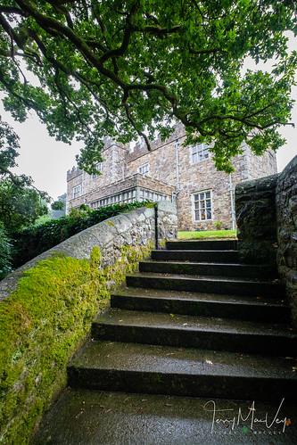 The wedding celebration of Alpa and Merv Lally.  #alpaandmerv  Saturday, August 11, 2018. Waterford Castle and Golf Resort. The Island, Waterford, Co. Waterford, X91 Y722, Ireland.  @waterford_castle #wedding #weddings #weddingvenue #brides #castle #water