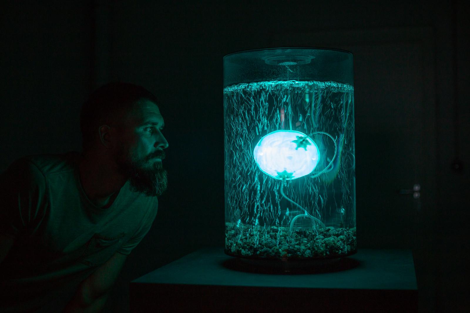 ArchaeaBot / Anna Dumitriu (GB), Alex May (GB)
