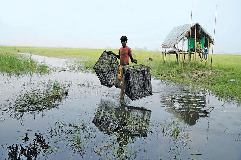 बिहार में दलदली क्षेत्र से मछुआरों की आजीविका सुनिश्चित होती है