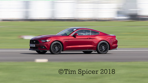 Mustang | by Tim Spicer Photography