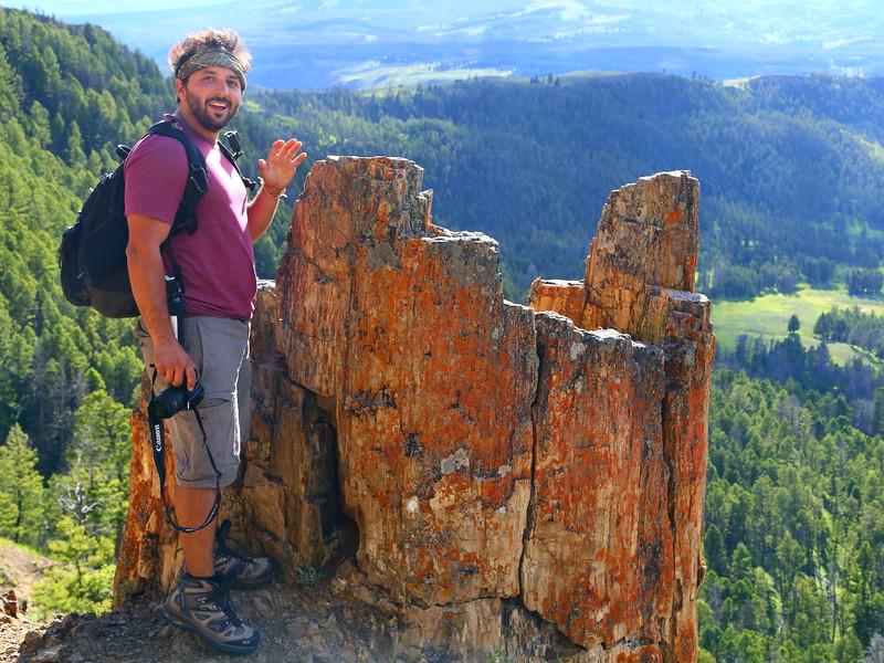 IMG_8392 Petrified Tree, Yellowstone National Park