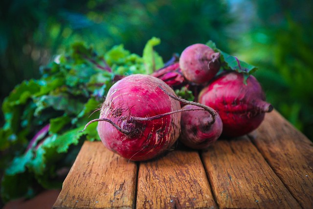 beetroot harvest