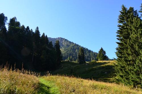 Bilten GL - Alp Unternideren 1211 m