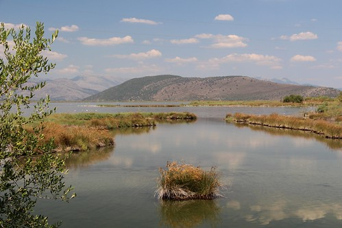 greece amvrakikos wetlands lagoon sea nature wildlife bird beach national park