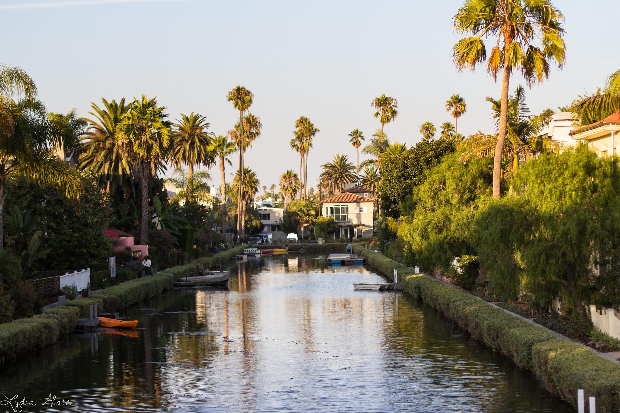 Venice California-2.jpg