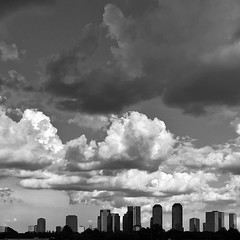 Uptown Houston Skyline M