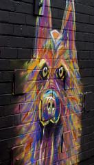 Graffiti dog alsation