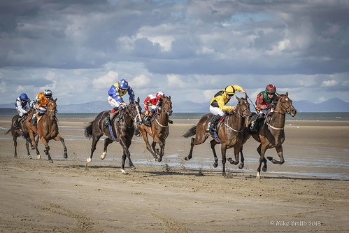 Laytown Races, Co Meath