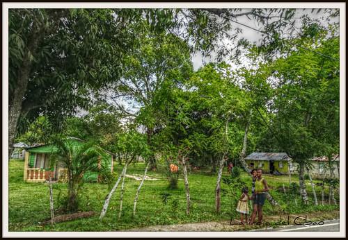 laindiadelcibao republicadominicana guanuma campo