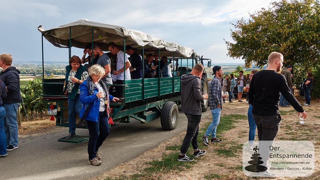 Weinprobe in den Weinbergen: Ankunft am Gottesgarten
