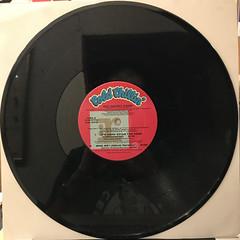 BIG DADDY KANE:IT'S HARD BEING THE KANE(RECORD SIDE-B)