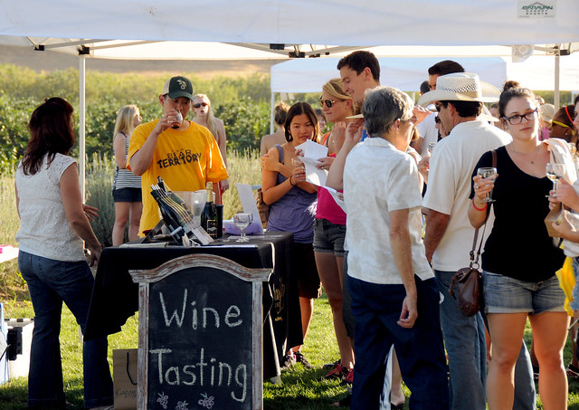 The Beginners Guide to Wine Tasting