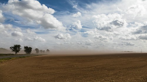 duststorms norfolk