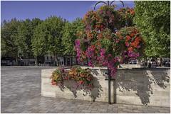 Salisbury Market Square 3