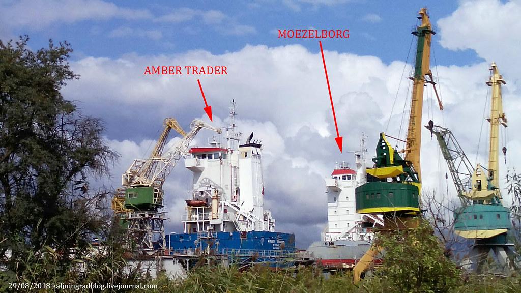 Amber Trader