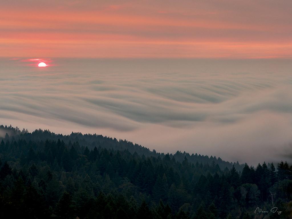 Le brouillard 44315560901_ced6b627c6_b