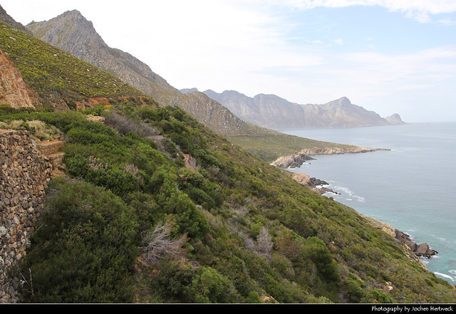 Kogelberg Nature Reserve, South Africa