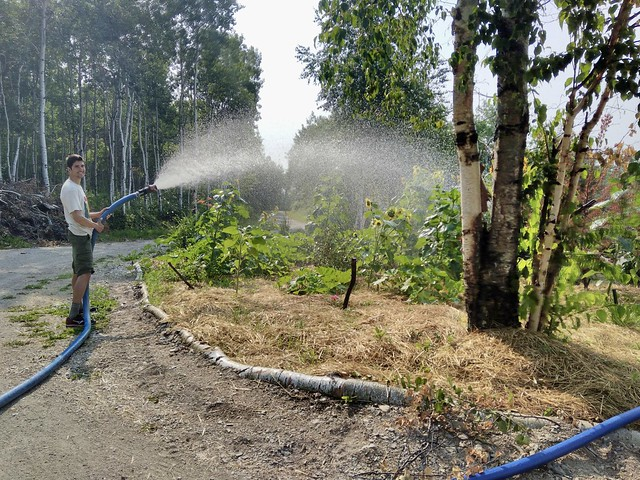 Watering the Garden with a Firehose