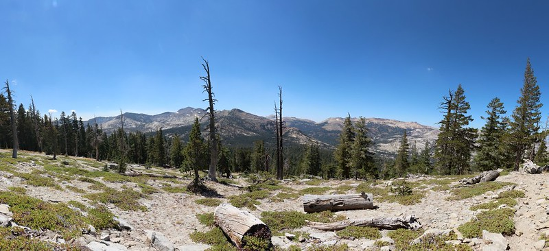 The Tahoe-Yosemite Trail breaks out of the forest and provides stunning views along Phipps Peak