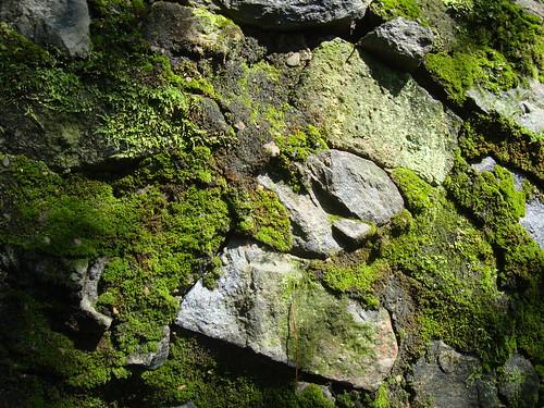 Mauer auf Bongnaesan