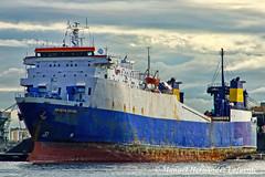 RoRo Cargo Ships