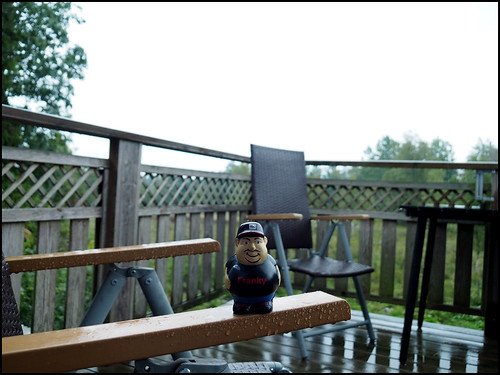 3652018 onemonth2018 august day242 3082018 kostolany244 olympusomdem5markii europe sweden geo:country=sweden month franky balcony rain 365the2018edition