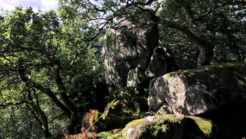 Dewerstone Rock pinnacle