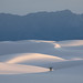 Shifting Sands by gseloff