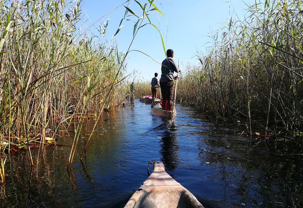 okavango-delta-botswana-mokoro-canoe