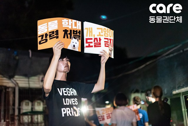 Demonstration at Taepyeong Dog Slaughterhouse