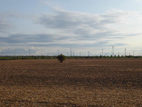 Windpark bei Weißenfels