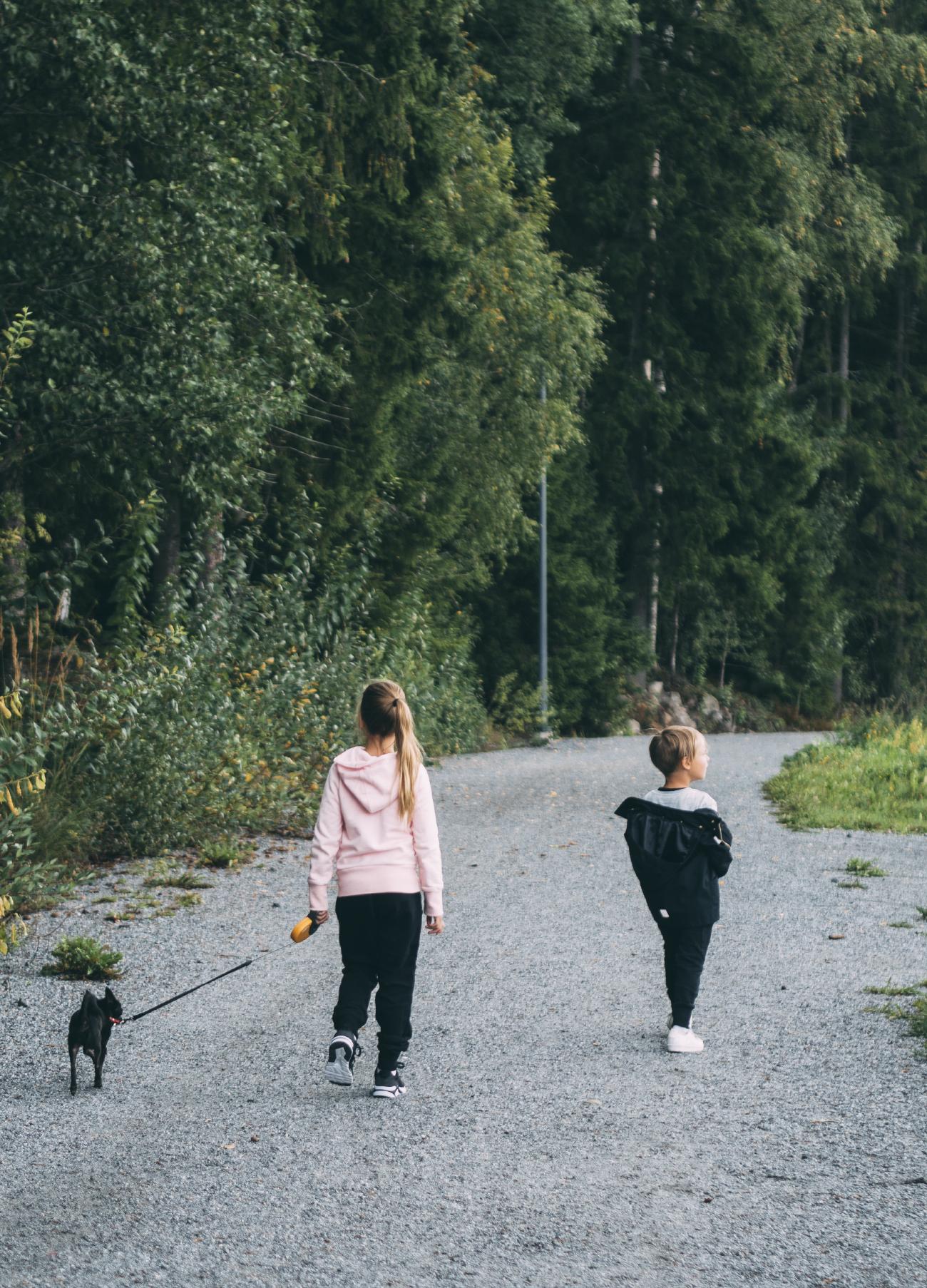 sunnuntaikävely 15
