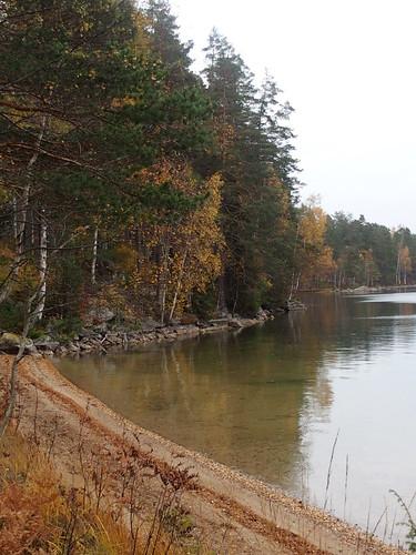 BR E21 Skälsjön