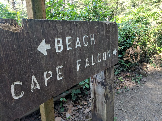 Cape Falcon Sign