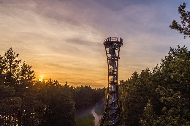 Aerial view of observation tower in Labanoras regional park, Lithuania