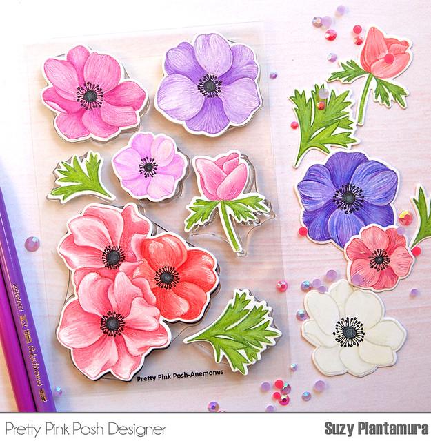 anemones 4