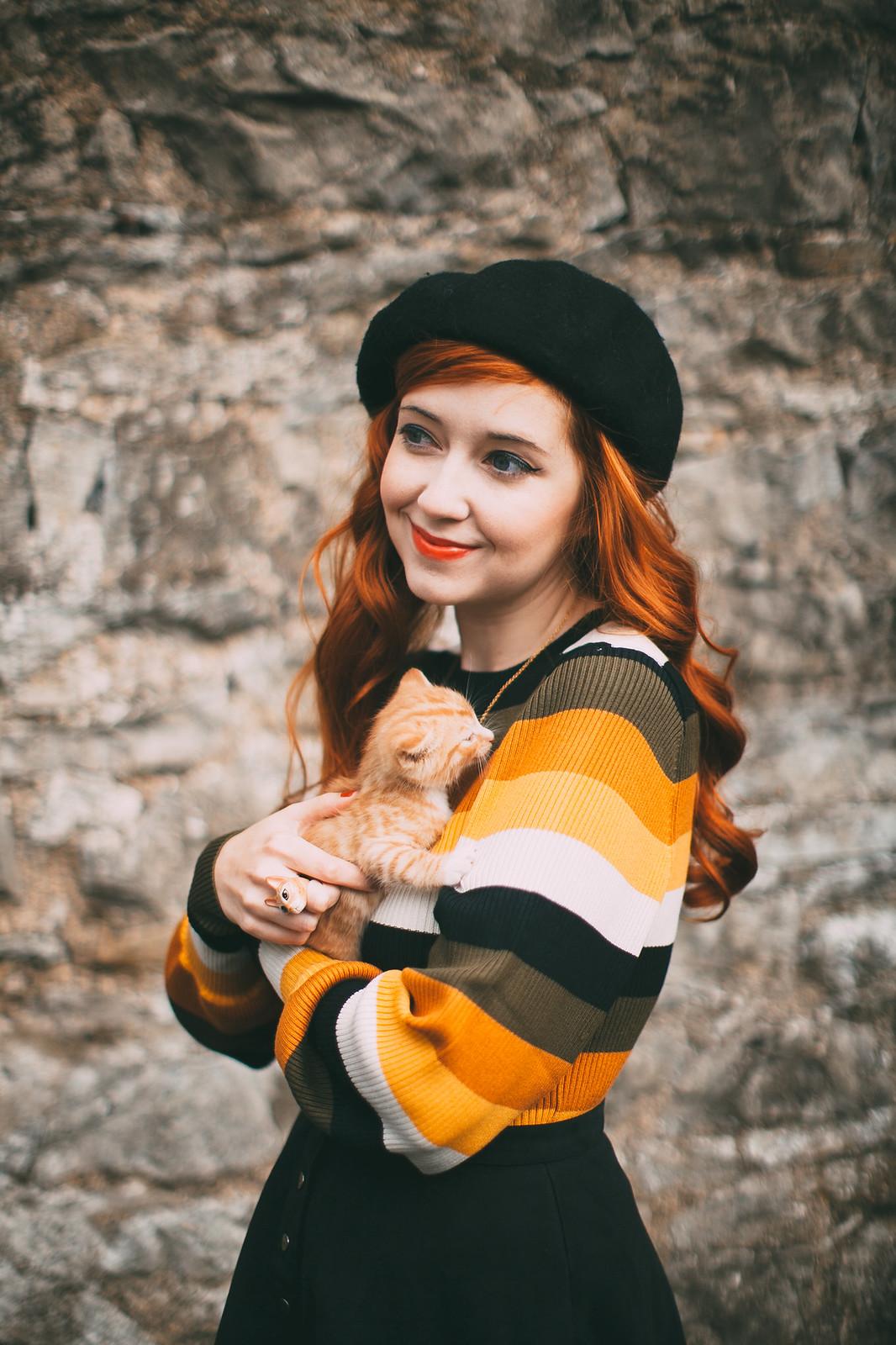 ginger kitten-26