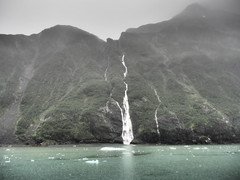 Alaska_26Glacier-Whittier_20180820-152236_PALE4788#