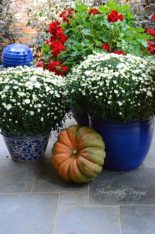 Fall Mums-Housepitality Designs