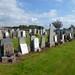 Hawkhill Cemetery Stevenston (139)
