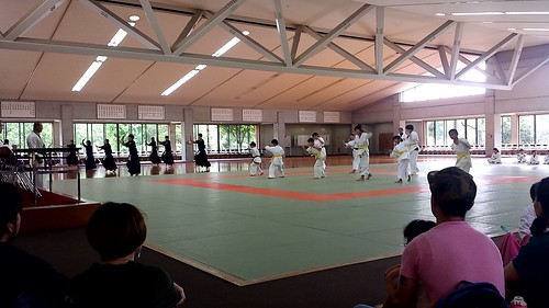 Kendo and Karate Kata (Forms)  as Self Seeing Robots