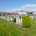 Hawkhill Cemetery Stevenston (130)
