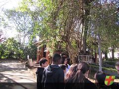 7º ano EF II realiza aula prática no Horto Botânico da Academia