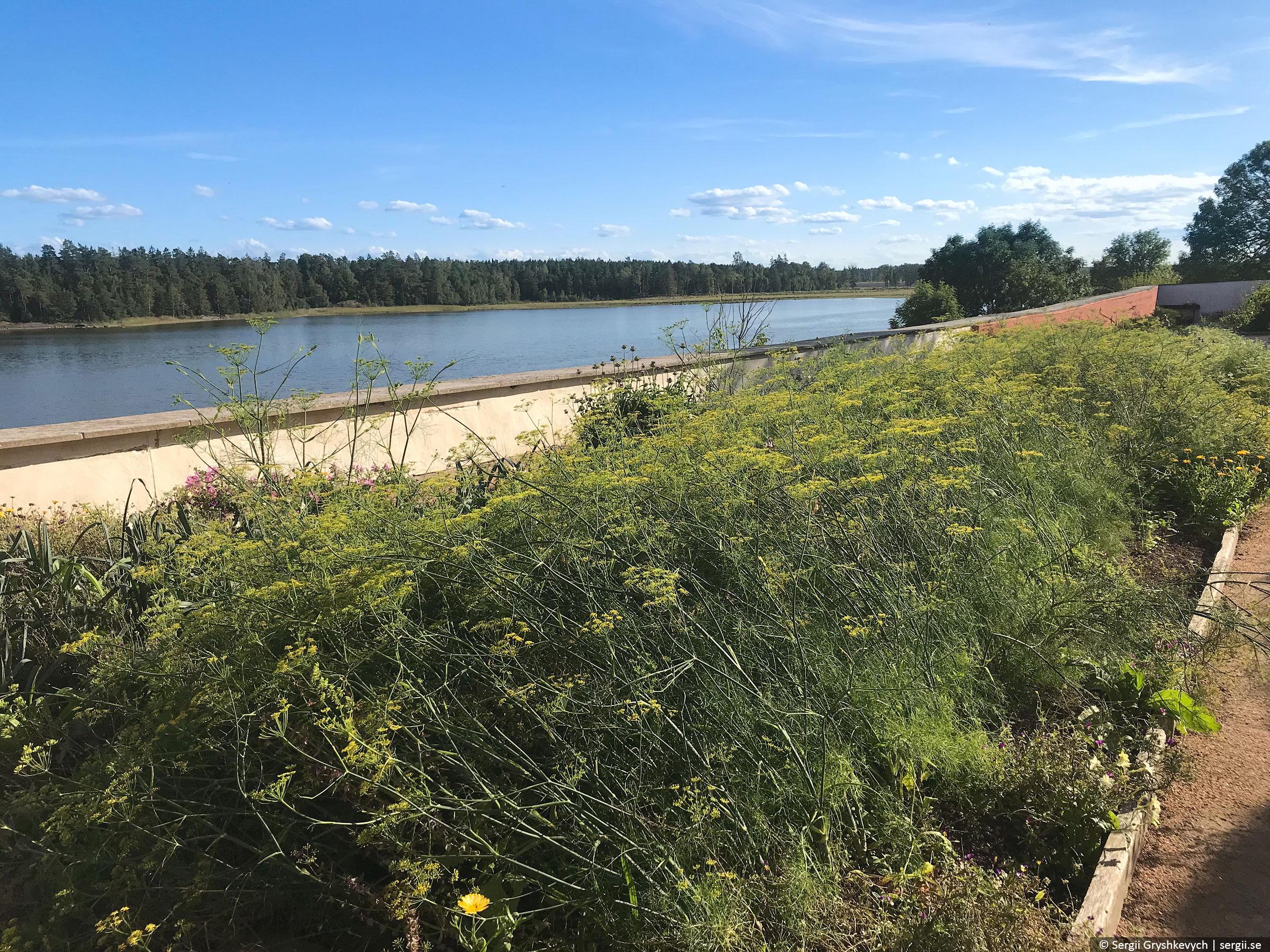 west-coast-sweden-2018-52