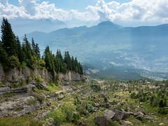 Goldau landslide / Goldauer Bergsturz